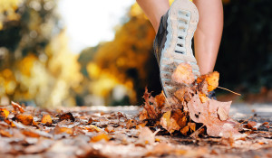 Fall-Fitness-Tips-TITLE-Boxing-Club