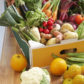 Spring into Healthier Eating – Behavior Modification